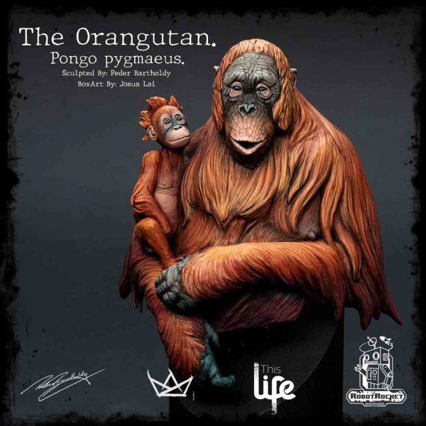 Orangutan Box Sticker