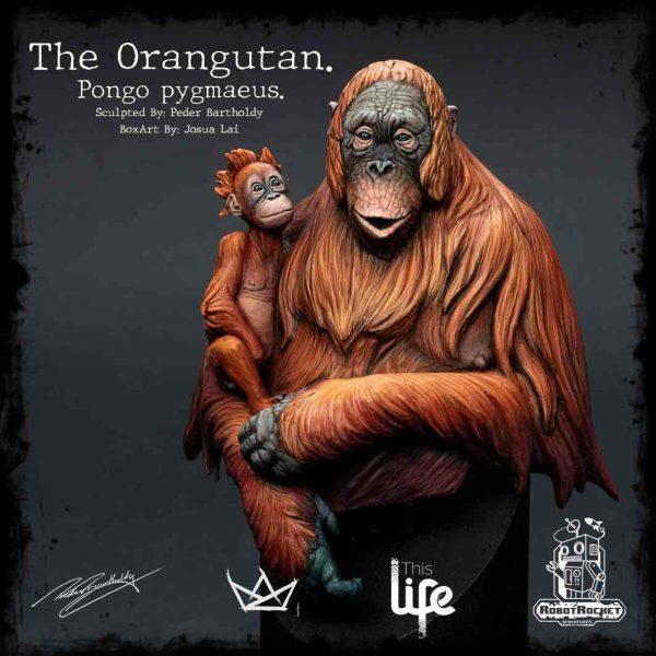 Orangutan Box Sticker