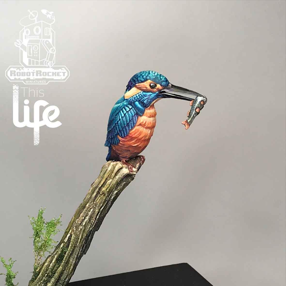 hummingbird-small-new
